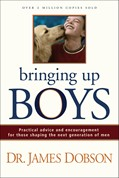 Cover: Bringing Up Boys