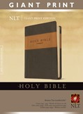 Cover: Holy Bible, Giant Print NLT