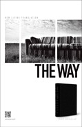 Cover: The Way NLT
