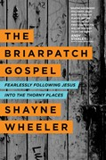 Cover: The Briarpatch Gospel