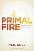 Cover: Primal Fire
