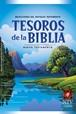 Tesoros de la Biblia NTV : Hardcover