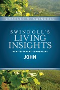 Cover: Insights on John