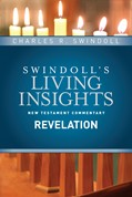 Cover: Insights on Revelation