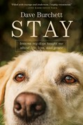 Cover: Stay