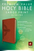 Cover: Premium Value Slimline Bible Large Print NLT