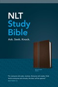 Cover: NLT Study Bible