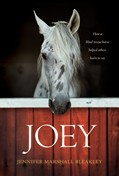 Cover: Joey