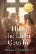 Cover: How the Light Gets In