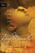 Cover: Small Town, Big Miracle