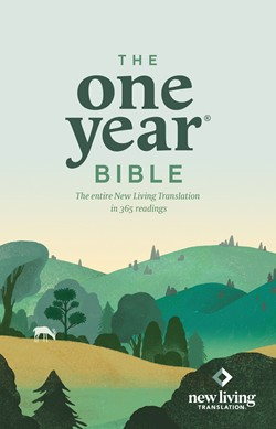 Front cover image of The One Year Bible, New Living Translation. This Bibles offers a great way to cover the entire Bible in just one year, making the Bible far less intimidating for new believers.