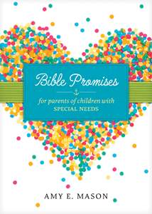 Bible Promises for Parents of Children with Special Needs: Softcover