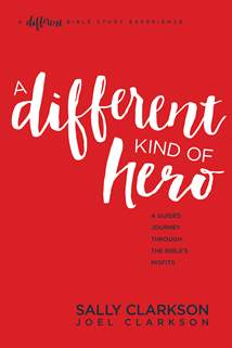 A Different Kind of Hero: Softcover