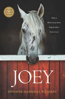 Joey: Softcover