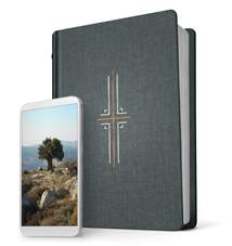 Filament Bible NLT: Hardcover Cloth, Indexed, Gray