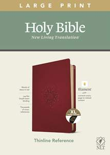 NLT Large Print Thinline Reference Bible, Filament Enabled Edition: LeatherLike, Indexed, Aurora Cranberry, Red Letter