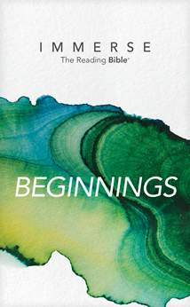 Immerse: Beginnings: Softcover