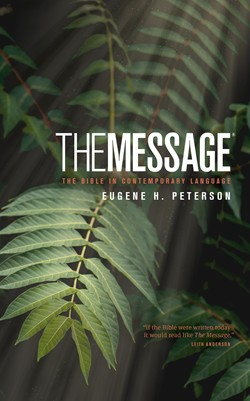 Front cover image of the personal size The Message Bible. A great Bible for new believers, written in modern language.
