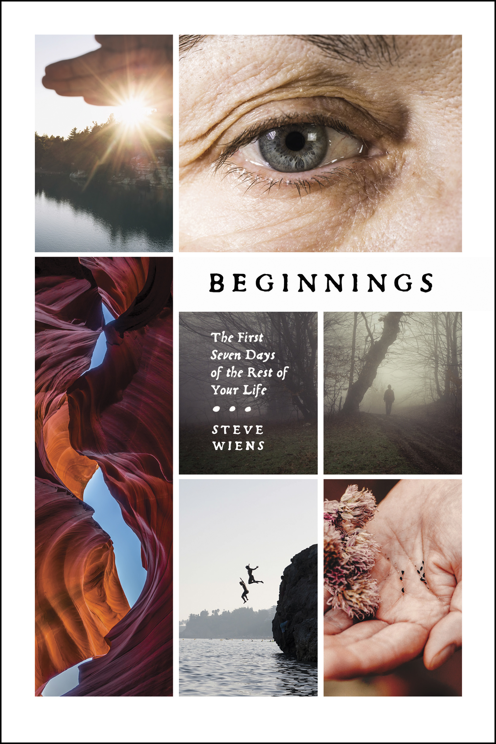 Cover of Beginnings, by Steve Wiens