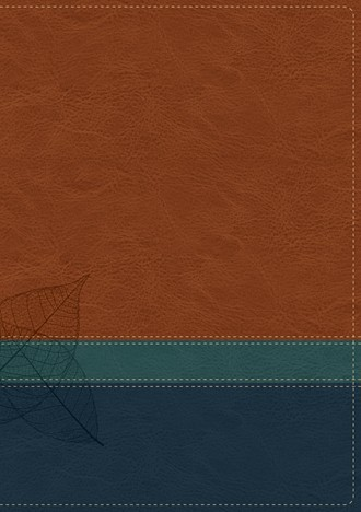 Cover image of Swindoll Study Bible TuTone Brown, Teal