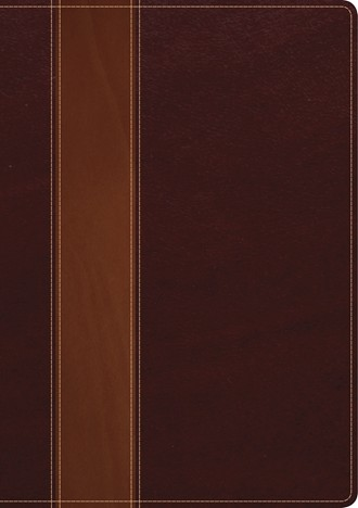 Cover image of Swindoll Study Bible TuTone brown binding