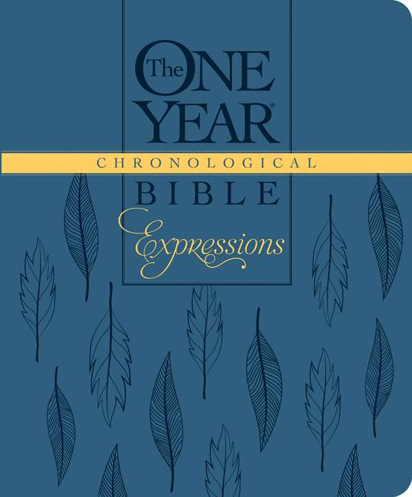 Cover of The One Year Chronological Journaling Bible by Tyndale House Publishers